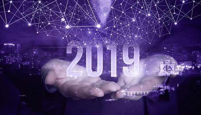 Staria's Annual Report 2019